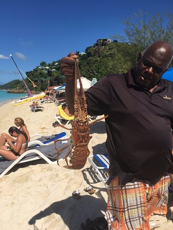 Jolly Harbour, Antigua: The cafe was featuring freshly-caught lobster!