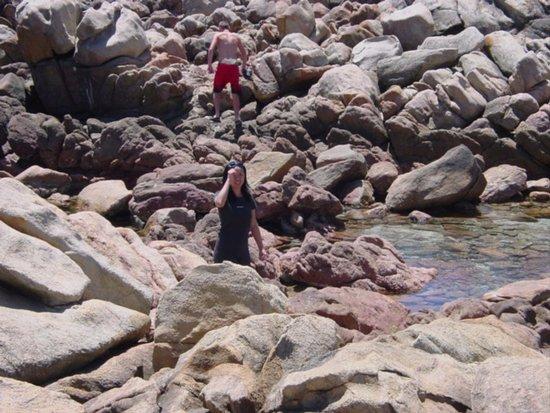 Γιαλινγκούπ, Αυστραλία: Looking for sea life