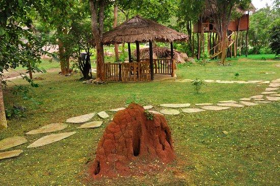 Zdjęcie Uva Province