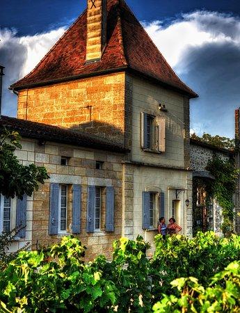 Petit-Palais-Et-Cornemps, Francja: Château