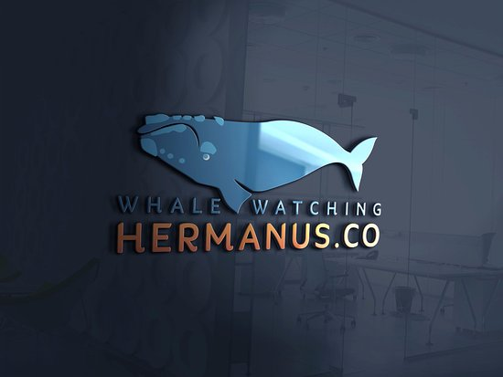 Whale Watching Hermanus 3D Logo
