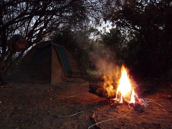Maun, บอตสวานา: My tent
