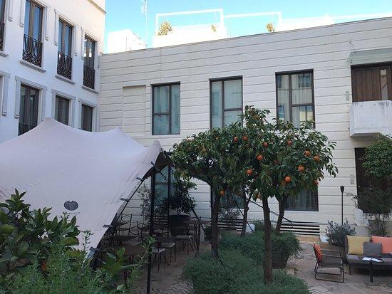 Hotel Palacio de Villapanés: photo3.jpg
