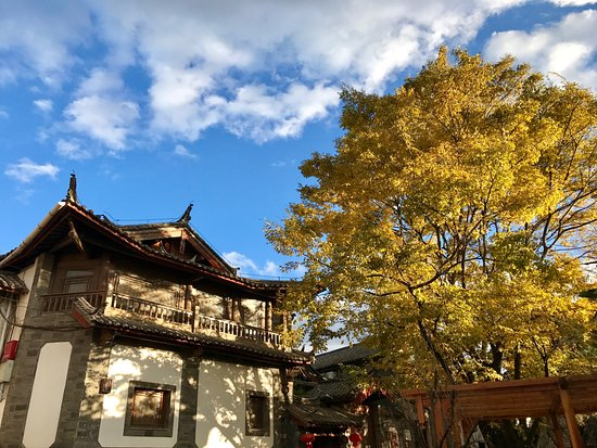 Zen Garden Hotel (Wuyi Yard): Exterior shot with autumn colours.