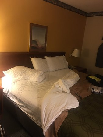 Kalkaska, MI: The room is decent, clean and the bed is very comfortable. I stay in a lot of hotels and feel th