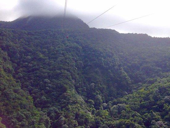 Cabarete, Republik Dominika: mountain isabel de torres puerto plata.