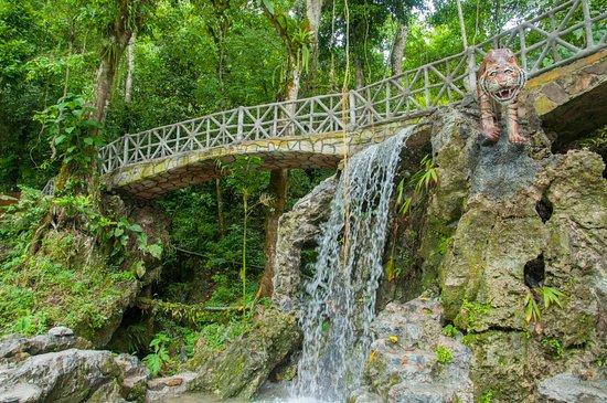 Centro Turistico Naciente del Río Tio Yacu: lindo