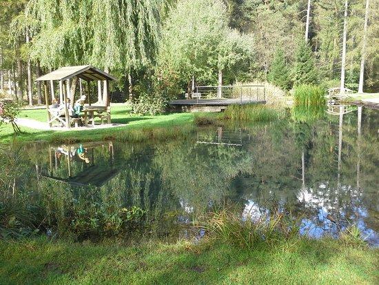 Villabassa, Italy: Il laghetto del Kurpark.