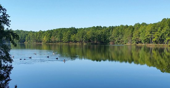 Southern Pines, Carolina do Norte: Beautiful scenery
