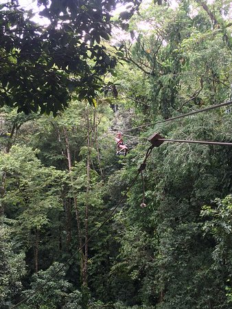 Sky Zipline Canopy Tour at Red Frog Beach: half way