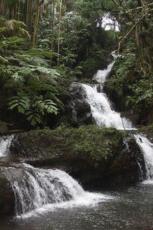 Papaikou, Havai: Waterfall in the gardens