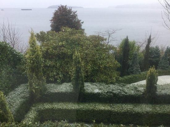 Sechelt, Canada: Frosty greens..