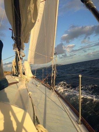 White Wing Sailing: photo0.jpg