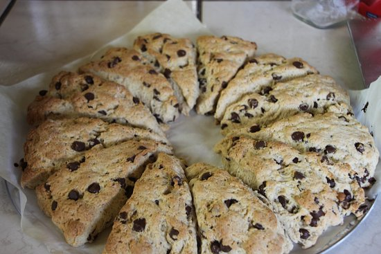 Lakefield, Canadá: Yummy Chocolate Chip Scones