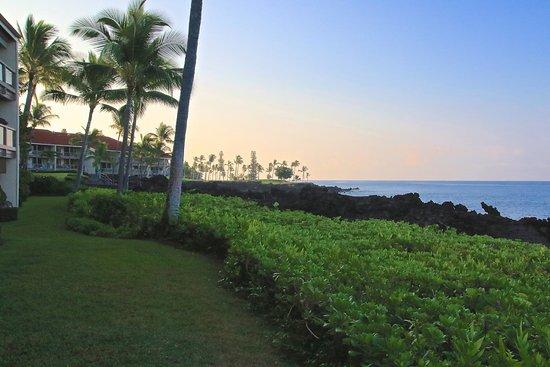 Keauhou Kona Surf & Racquet Club: view from lawn outside our lanai