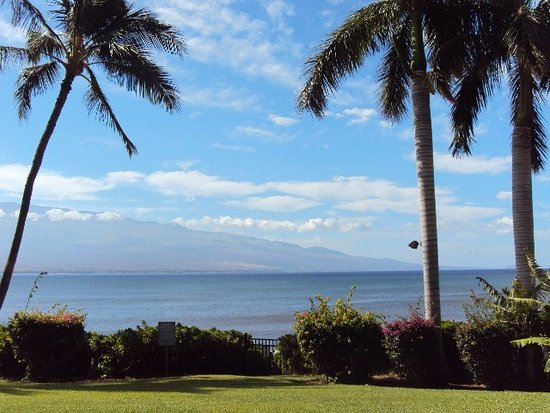 Maalaea Banyans : The view from our lanai!