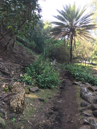 Kalaupapa National Historical Park : Lower portion of trail.