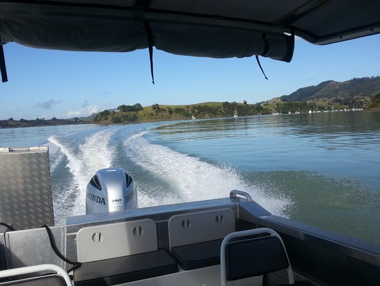 Around Whangaroa harbour
