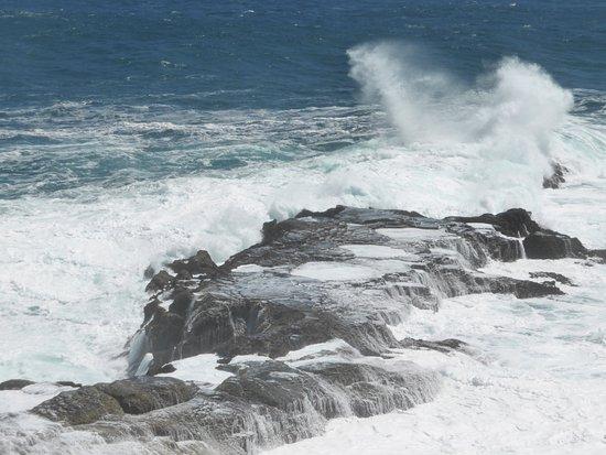 Plettenberg Bay, Sudáfrica: The power of the sea always fascinates me.