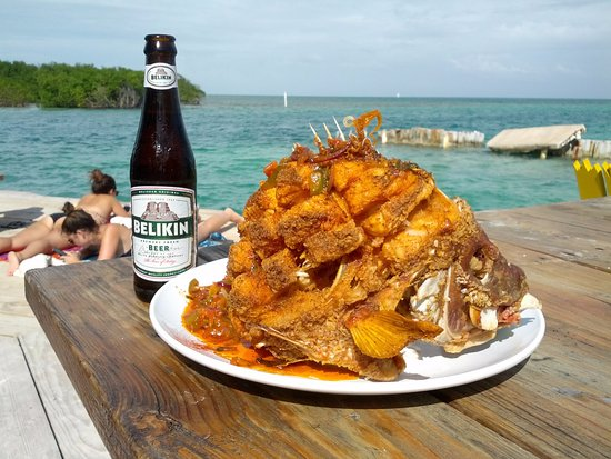 Giant Fried Grouper A Chefs Special Lazy Lizard Bar Grill And