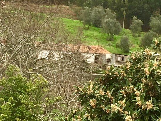 Monchique, البرتغال: The surrounding area ...