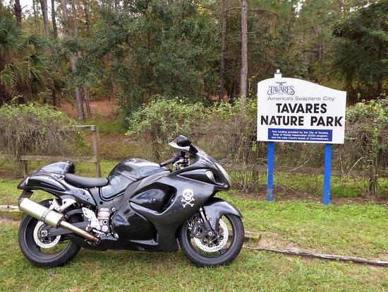 Tavares Nature Park