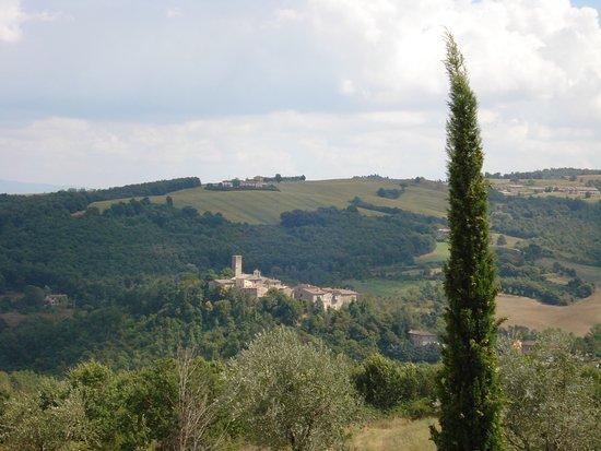Foto San Venanzo