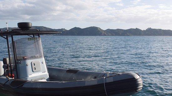 Paihia, Yeni Zelanda: our transport to the houseboat