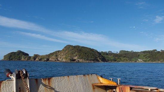 Paihia, Yeni Zelanda: can't beat these views