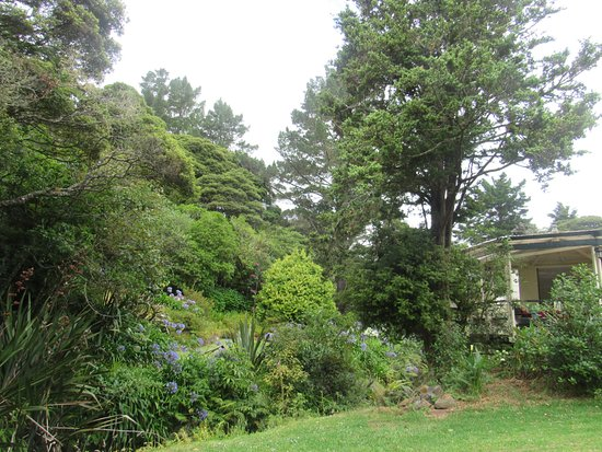 Dargaville, New Zealand: Une petite partie du jardin