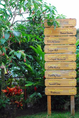Poas Volcano National Park, Costa Rica: Doka