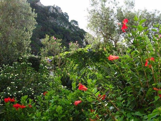 Hotel 4 Stagioni: jardin devant la chambre