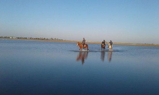 Midoun, Túnez: FB_IMG_1484341318130_large.jpg