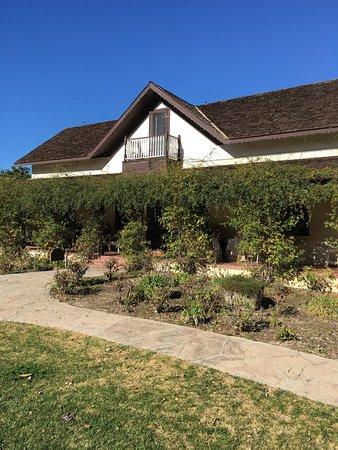 Solvang, كاليفورنيا: Rideau Vineyard
