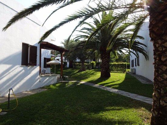 Trikorfo Beach Resort: garden