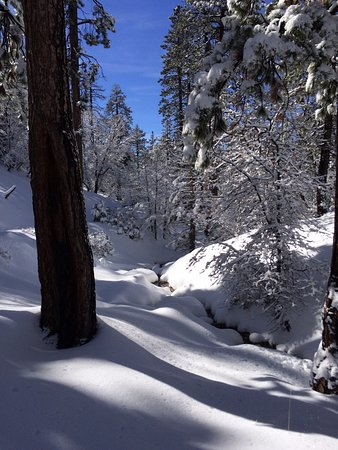 Running Springs, Californien: snowshoeing