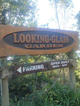 Te Puke, Nueva Zelanda: A wonderful excursion