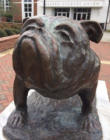 Starkville, MS: Bully statue in front of Student Union.
