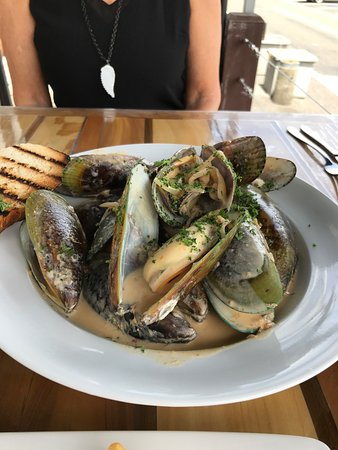 Epic NZ Mussels
