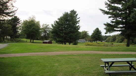 Pinehurst Motel and Cottages: The view from our cottage