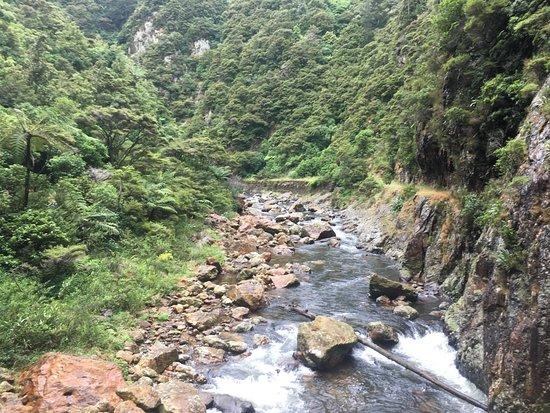 Waihi, Νέα Ζηλανδία: River