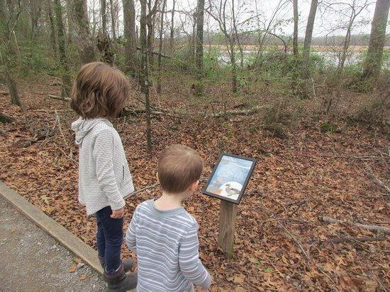 Decatur, AL: Trail sign