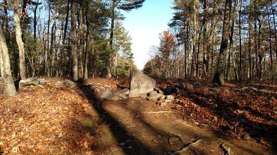 Salem, New Hampshire: Venus Alignment