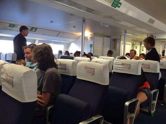 Venezia Lines High Speed Ferry International Transport : inside