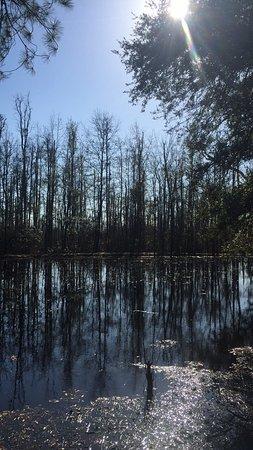 Bishopville, Carolina Selatan: photo0.jpg