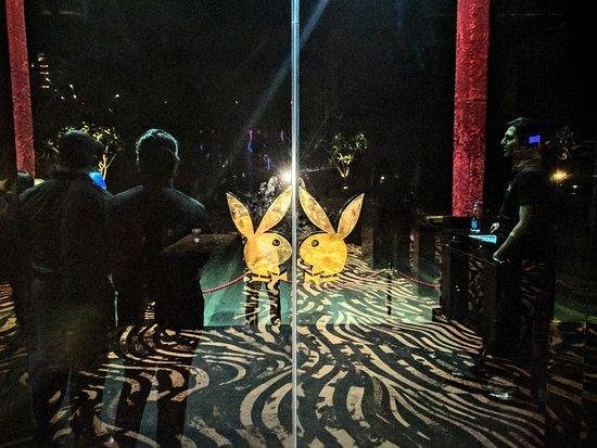 Playboy Club, Mumbai - Restaurant Reviews, Phone Number & Photos