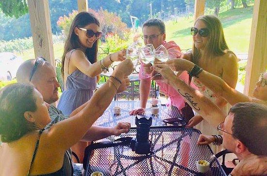 Visite du vignoble Virginia Blue Ridge