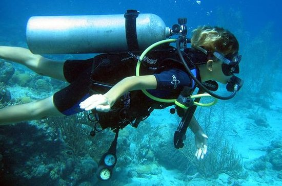 PADI 3-Day Open Water Diver Course in...