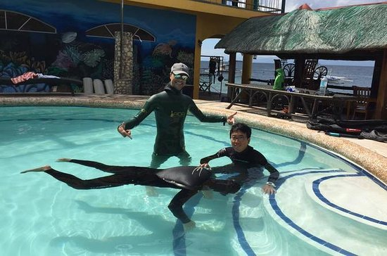 Full-Day AIDA 1 Freediver Course in...