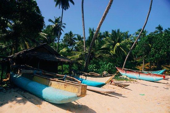 Tangalle, Sri Lanka: 2017-01-10 04_large.jpg